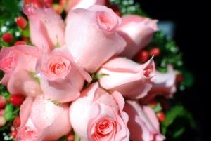 roze bladorozowe